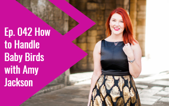 Ep. 042 How to Handle Baby Birds with Amy Jackson